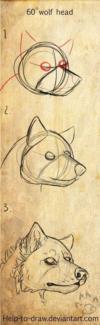 Canine head 60° #Zeichnen – #Aquarell #Blumen #Canine #Einfach #Frau