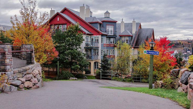加拿大秋季房屋保养-室内室外篇