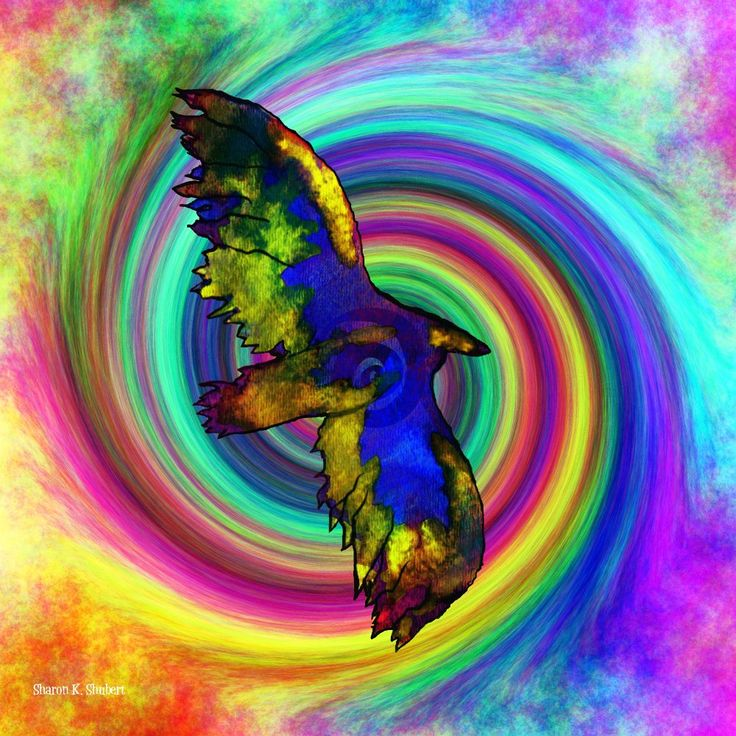 """Folk Art Eagle In Flight - Giclee Print - 8 x 8-inch - FREE SHIPPING!. Flying eagle, Southwestern style folk art mixed media painting in rainbow colors. One of my favorite Native American totem animal artworks. It's entitled, """"Flight Into Color"""". Eye candy for your daydreams! Inspired by my life-long love of bold color, design and folk art. Print type: Giclee Paper size: 8.5 x 11-inches Image size: 8 x 8-inches Paper type: HP Premium Soft Gloss Mat and frame not included. LARGER PRINTS on..."""