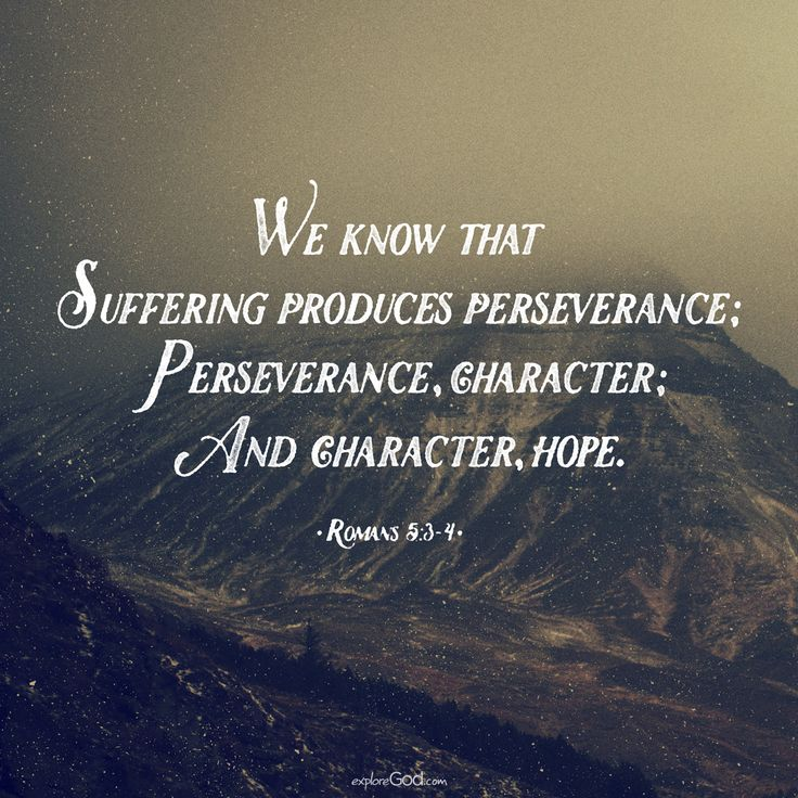 Persistence Motivational Quotes: 365 Best Images About Bible Verses On Pinterest