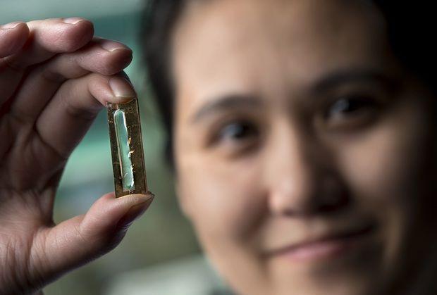 May Le Thai, candidat PhD al universitatii, a explicat că ea şi colegii ei au folosit nanowire, un material de câteva mii de ori mai subtire decat un fir de păr, foarte conductiv şi cu o suprafaţă suficient de mare pentru a sustine date şi transfer de electroni.   #autonomia #baterie #oamenii de stiinta #rezista veşnic