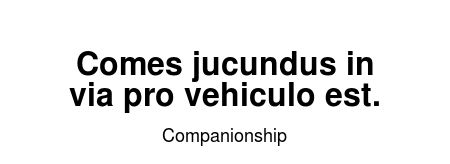 Read more Companionship quotes at wiktrest.com. Comes jucundus in via pro vehiculo est.