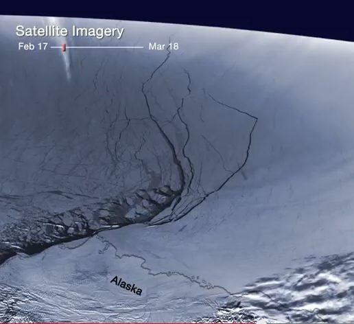 Breaking: Arctic Ice Breaks Up in Beaufort Sea. {Video} ~ Paul Beckwith