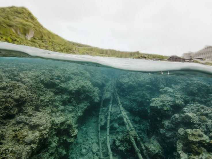 Photos of the Submarine Internet Cables the NSA Probably Tapped   Under the Beach (Tumon Bay, Guam)   Credit: Trevor Paglen   From Wired.com