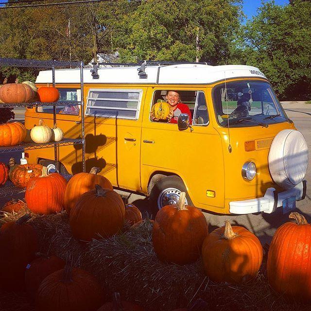 Liked on InstaGram: Pumpkin time!  Picking out an heirloom pumpkin for harvest season. #happyfall #pumpkins #heirloompumpkin #harvest #buslifeadventure #1976 #westy #westfalia #vwbus #enjoythejourney