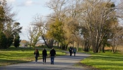 The Bridle Track is a local favourite place in #PalmerstonNorth, #NZ for walking, running and #cycling.