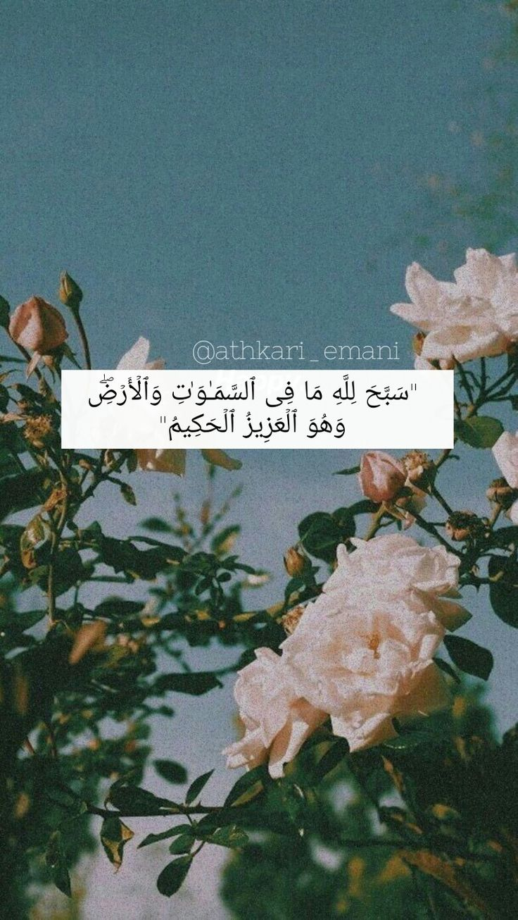 Pin By Eman Albusaidi On قرآن Iphone Wallpaper Quotes Love Sweet Quotes Instagram