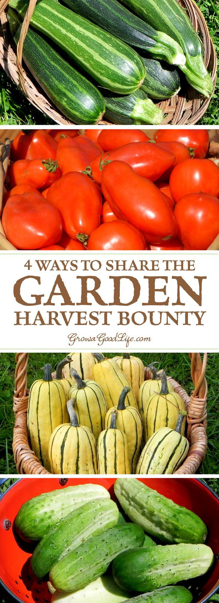 Food garden pictures - 4 Ways To Share The Garden Harvest Bounty