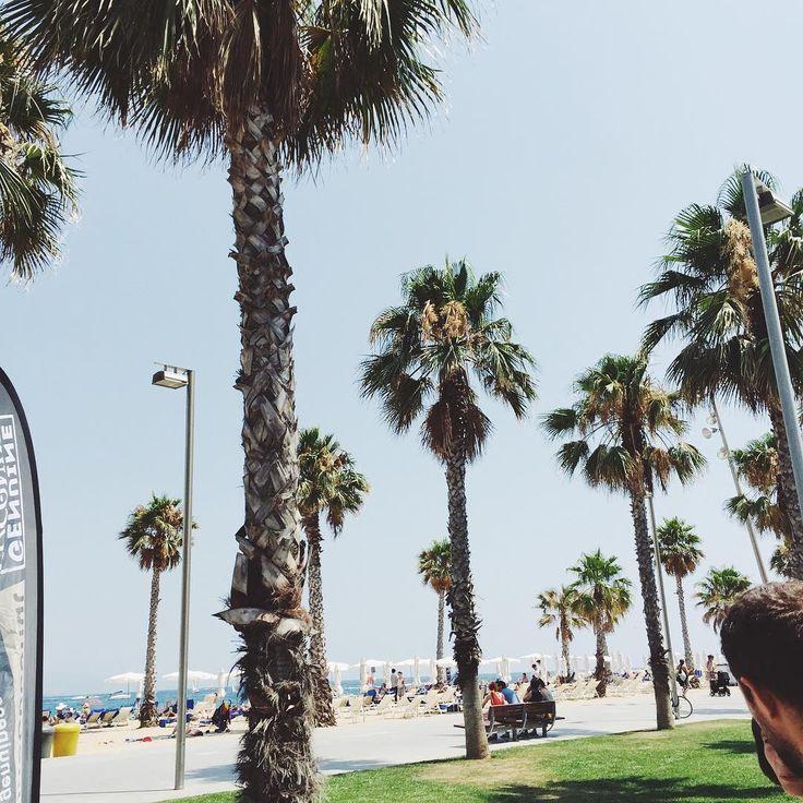 Can't ever get enough  / Barcelona with @touspolska #tb #tousbloggertour ☀️