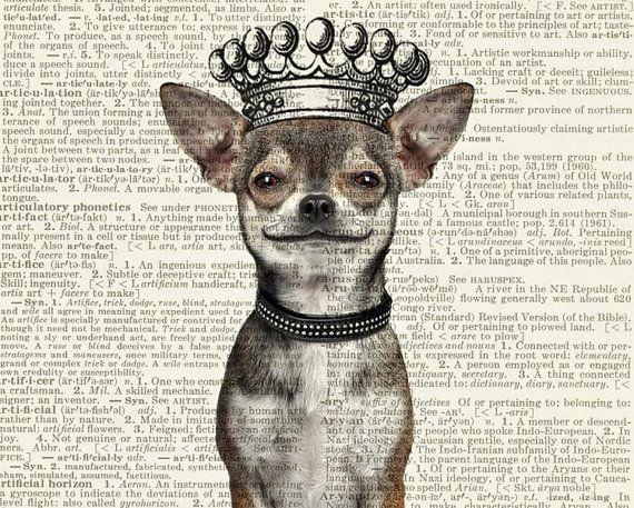 impresión de Chihuahua perro sonriente con corona por FauxKiss