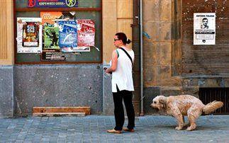 Ντετέκτιβ σκύλων στην Ισπανία Ντετέκτιβ http://begreek.eu/Index.asp?Code=000023