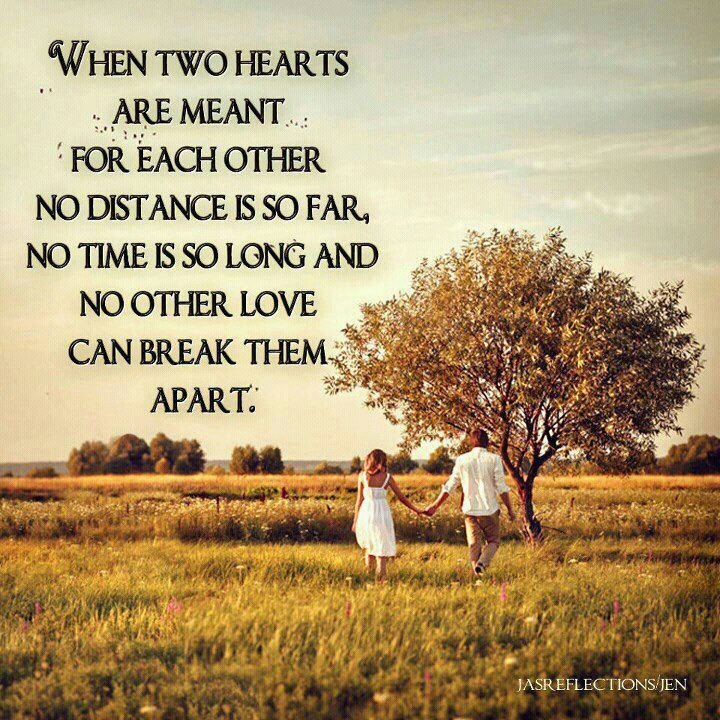 Love Each Other Quotes: Love, Sayings, Quotes, Funny Or
