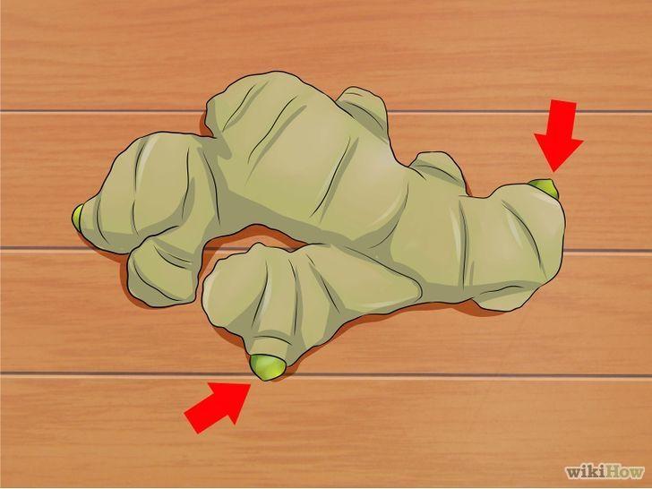 Come coltivare lo zenzero (illustrato)