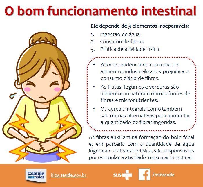 Funcionamento Intestinal!