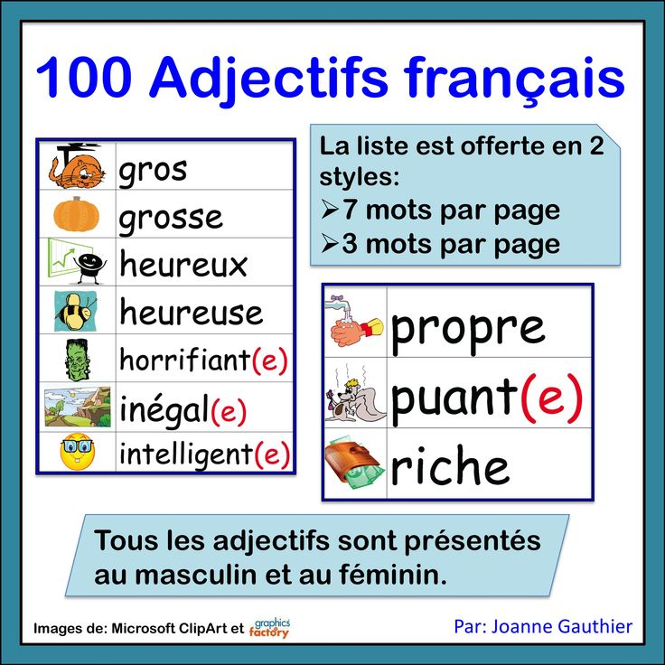 100 adjectives for beginning French students