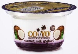 Mixed Berry Coconut Yogurt