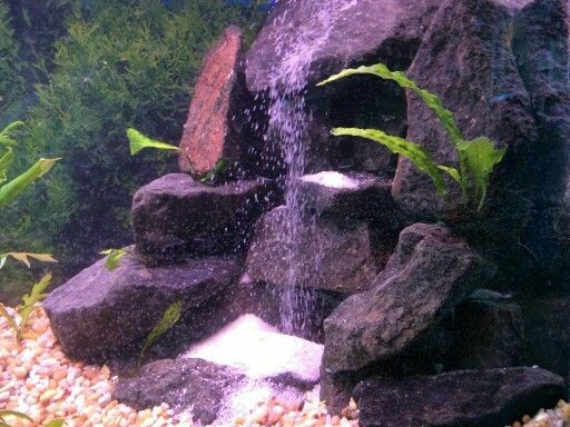 48 best images about fish tanks on pinterest amazing for Waterfall fish tank