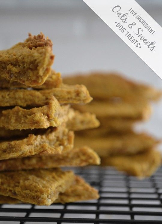 Baked No Flour Dog Treats With Oatmeal And Peanut Butter