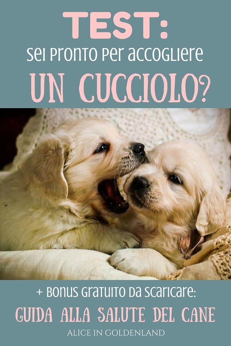 """Sei pronto per prendere un cucciolo? Scoprilo con questo test! In più free bonus: scarica la guida gratuita """"5 semplici azioni per un cane felice e sano"""""""