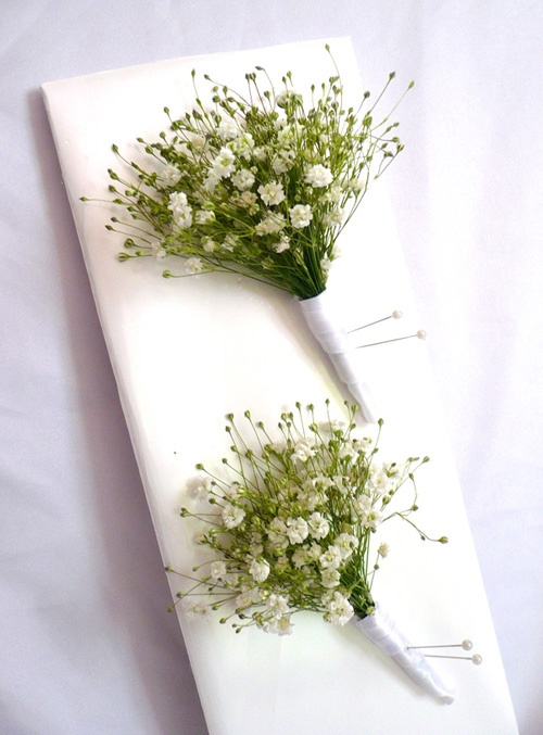 Boutonnieres of Baby's Breath! These boutonnieres are wildly charming as well as easy to make and as hardy as they come! These boutonnieres are a idea for DIY brides.: Babies Breath, Babys Breath Buttonholes, Wedding Ideas, Button Holes, Google Search, Wedding Flowers, Babys Breath Boutonniere, Boutonnieres