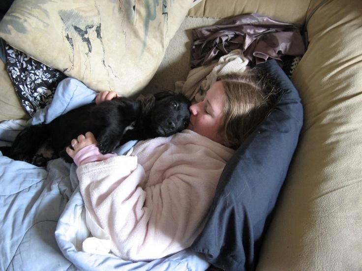 Darwin_Sleeping_on_Me