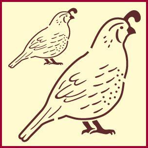 quail stencil - Google Search