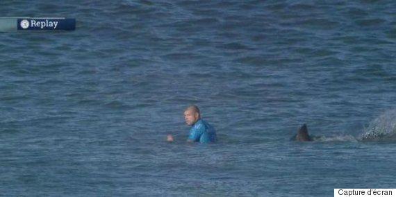 Afrique du Sud: un surfeur attaqué par un requin, devant les caméras (VIDÉO)