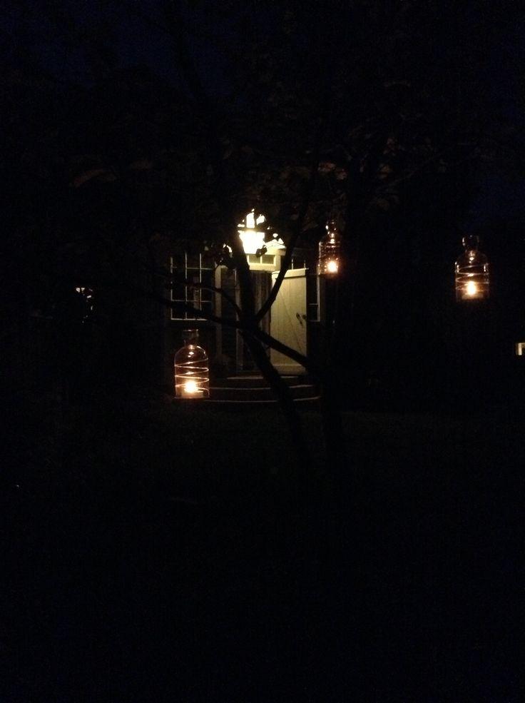 A warm August night in the garden