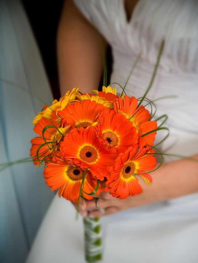 Fall Gerbera Daisy Bouquet Best 25+ Daisy ...
