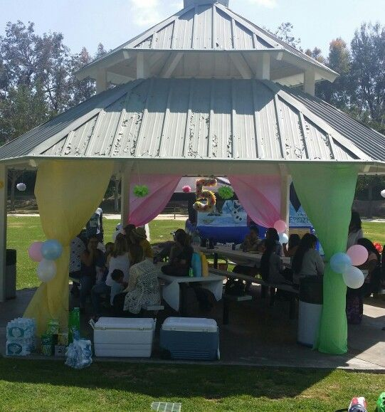 Dollar Tree tablecloth hung up to hide the poles... park birthday ...