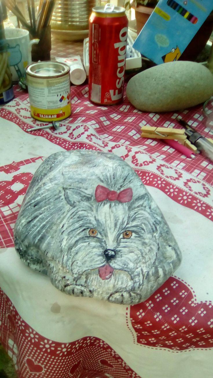 Perro yorchire