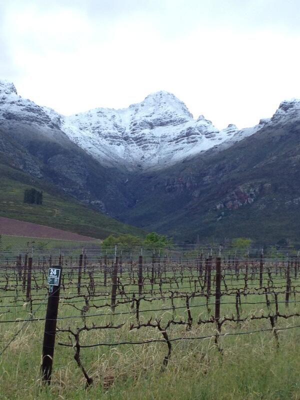 #snow in Stellenbosch, Western Cape (South Africa) via @david_bluenorth.