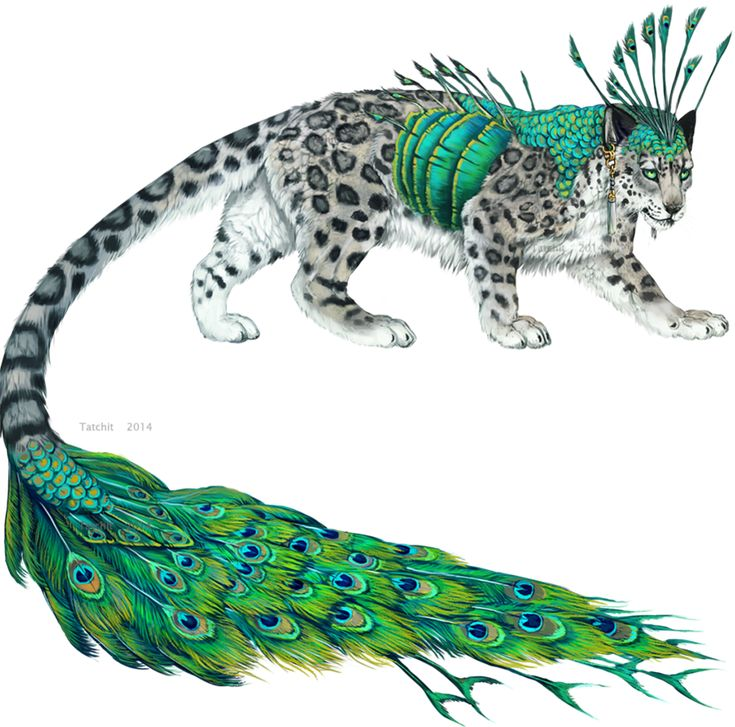 Snowflake : Strong, Kind, Brave, And Acts Fancy And Delicate Sometimes.  (Type: Peacock Leopard (Mate: None