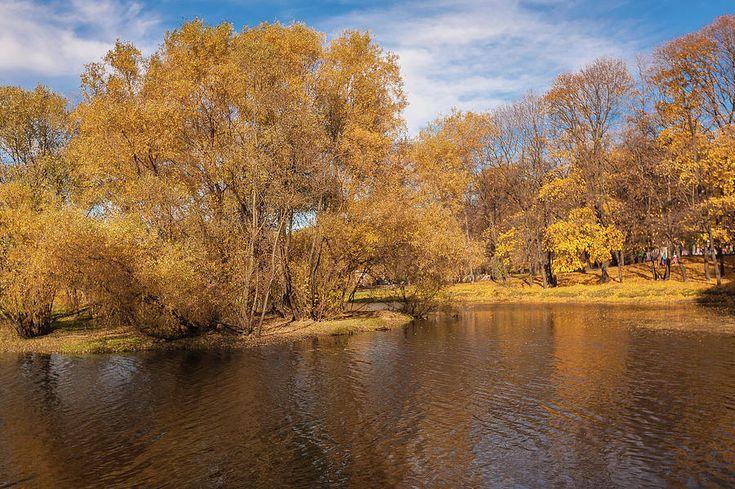 #AnnaMatveeva #FineArtPhotography #ArtForHome #FineArt #Photography  #Autumn #Landscape