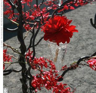Ceremony Decor: Ceremony Decoration, Red Decoration, Red Flower, Red Leaves, Rosehip, Flower Idea, Flower Decoration, Roses Hip, Red Black