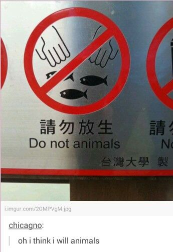 You can't tell me what to do I'm gonna animals and you're gonna like it