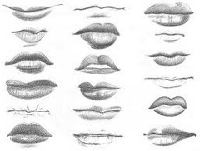 Grande: Sensualidad, deseos materiales  Pequeña: Timidez, deseo de gustar y agradar, ternura  Labios finos: Actitud práctica, tendencia a ...