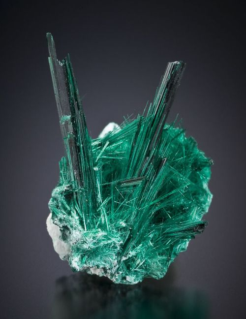 Brochantite - Milpillas Mine, Cuitaca, Mun. de Santa Cruz, Sonora, Mexico Size: 21.4 x 17.7 mm