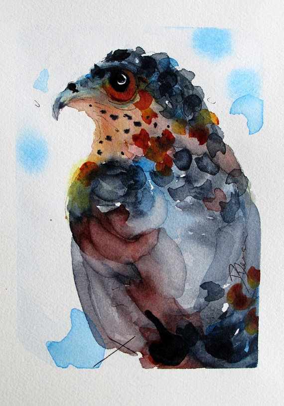 Hawk painting watercolor - photo#5