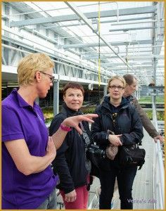 Listening to the personal story of Mariëlle van Laak on an exclusive tour through a orchid greenhouse in Holland