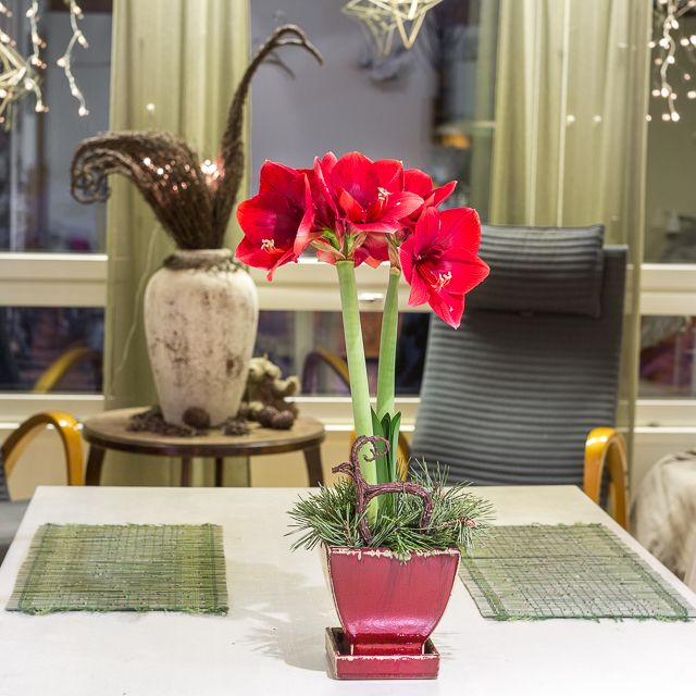 I love christmas mood with flowers, lights, twigs, himmelis... www.risusta.fi
