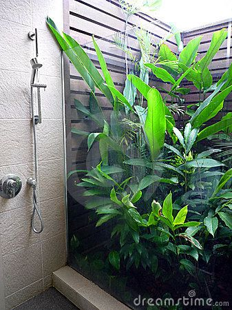 A photograph of a new design unique partial outdoor bathroom of a beautiful tropical resort, with small open air garden full of lush green plants, separated from large shower area by a glass pane.  Natural lighting from open air room.  Color format image, vertical style, empty, nobody in picture.