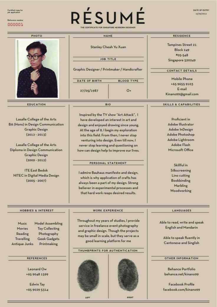 Fantastic Examples of Creative Resume Designs 41
