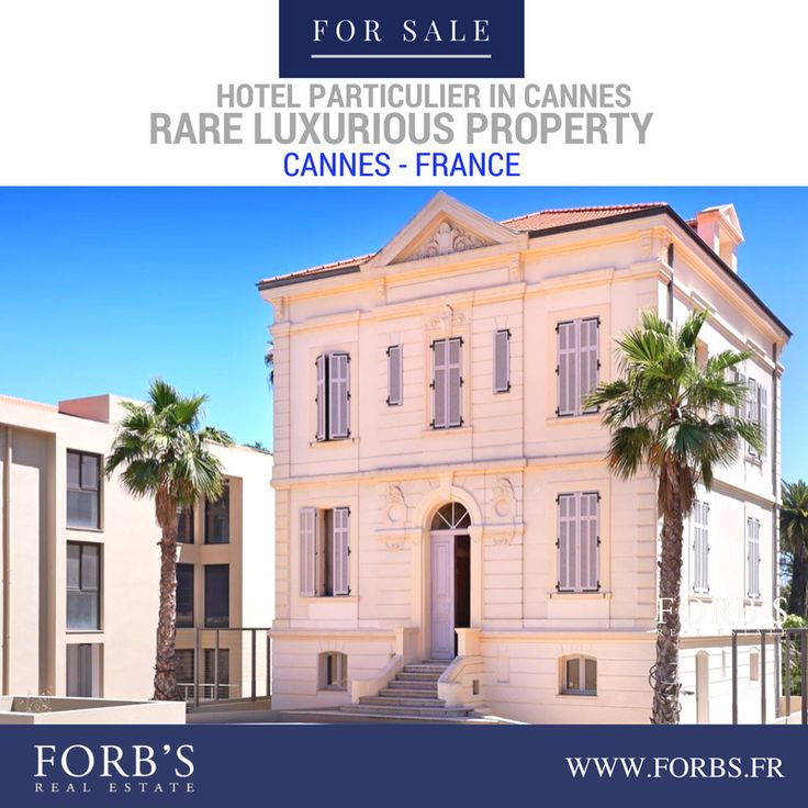 Hotel Particulier In Cannes FOR SALE! A very rare property to find, with a swimming pool on a peaceful land on 5000m2. (Ask for REF: V-248) Visit LINK on bio @forbsrealestate Or CALL OUR FREE LINE +33(0)493-39-39-39 #forbsrealestate #RealEstate #cannesrealestate #luxuryrealestate #Realtor #Realty #Broker #ForSale#NewHome #HouseHunting #MillionDollarListing#HomeSale #HomesForSale #Property #Properties#Investment #Home #Housing #Listing #france #croisette #frenchriviera #cannes