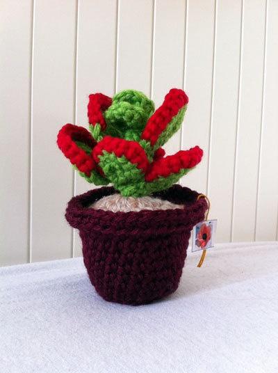 crochet succulent crochet cactus evergreen plants by Kilewia, $15.00