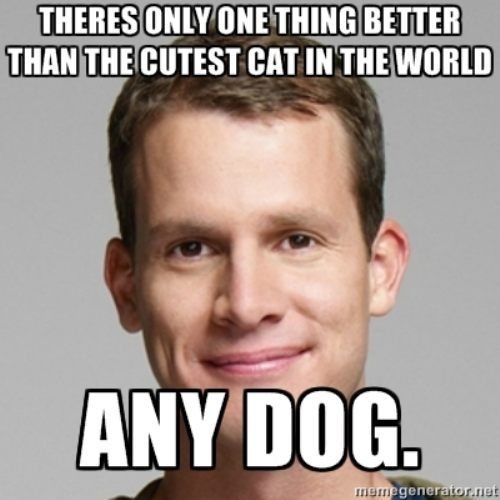 amenLaugh, Funny, Truths, I Love Cat, True, Things, Dogs Rules, Hate Cat, Daniel Tosh Quotes