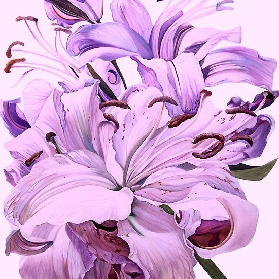 Purple Lillies for #CreateArtHistory