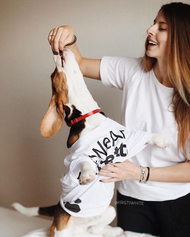 #beagle #beagles #beaglesofinstagram #beaglelove #justbeagles #beaglemania #beaglelife #ilovemydog #puppyface #инстаграмзверят #WeeklyFluff #dogsofinstagram #houndsbazaar #topdogphoto #bestwoof #dogs_of_world #doglove #dogsofinstaworld #instapet #puppyoftheday #бигль #mydogiscutiest #aplacetolovedog #ohmydog #beagleloveit #worldofcutepets #ilove_simplebeyond #houndandlife