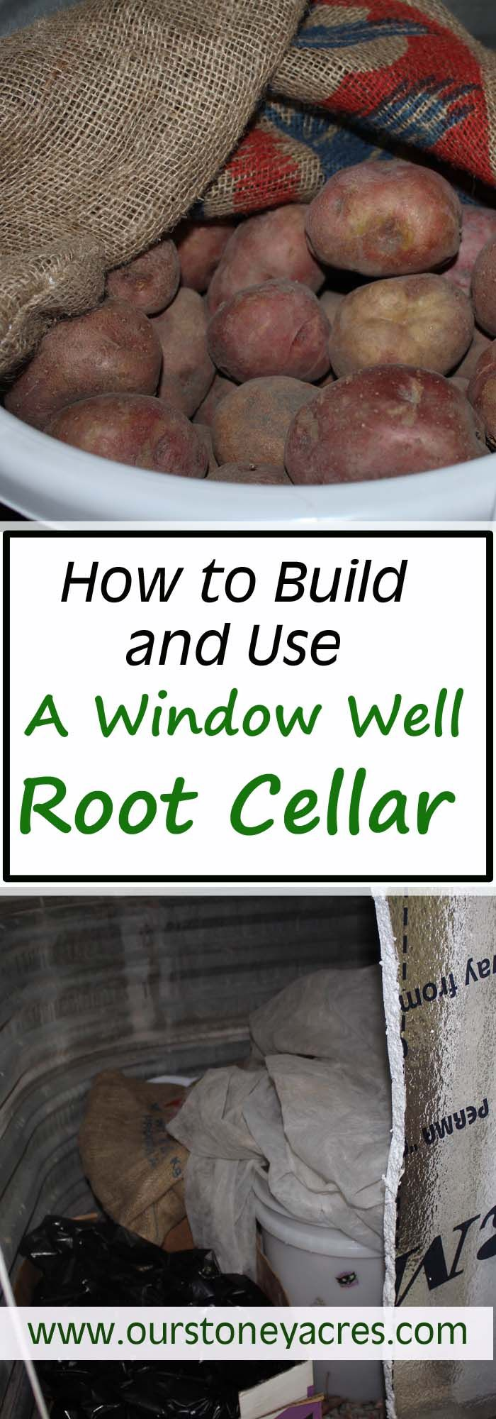 A Window Well Root Cellar is turning out to be a pretty effective way to store out potatoes over the winter.  All you need to get started is a window well that doesn't face south.  Then you can store your garden produce all winter.  Click on this post to learn more about this food storage option!