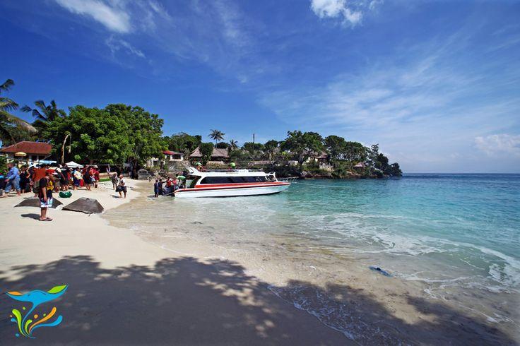 Mushroom Bay yang oleh masyarakat setempat dikenal sebagai Teluk Sanghyang merupakan satu dari dua pantai paling populer di Nusa Lembongan.